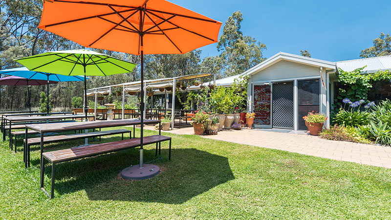 best lunch hunter valley