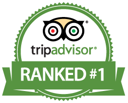 Ranked #1 on Tripadvisor